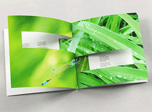 inspirational printed booklets