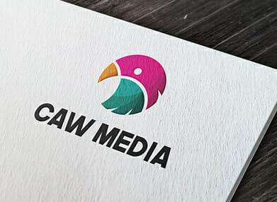 professional graphic design of logo