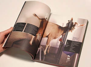 open magazine with varnish sealed pages
